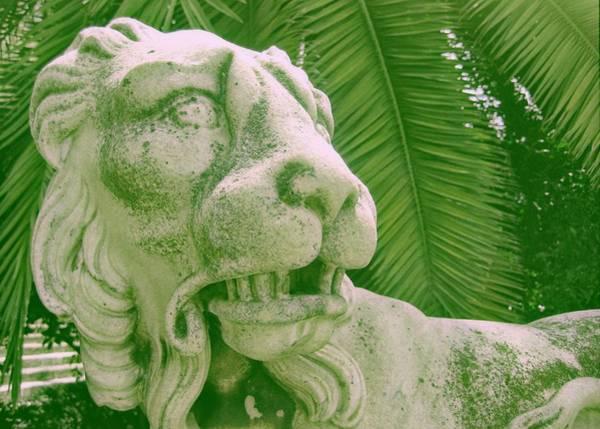 Photograph - Silent Roar Of Seville by JAMART Photography