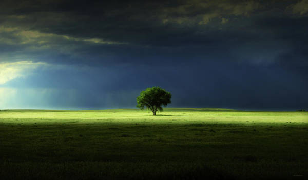 Strange Land Wall Art - Photograph - Silent Solitude by Brian Gustafson