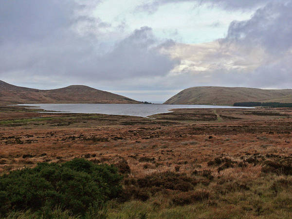 Photograph - Silent Valley by Colin Clarke