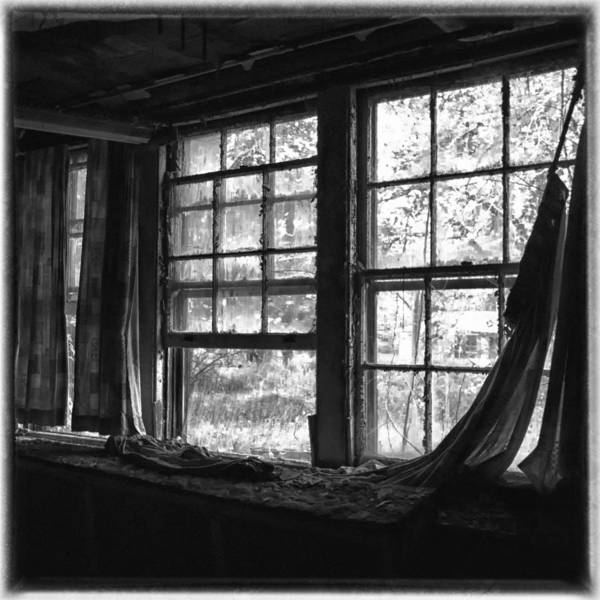 Photograph - Silent View by Ghostwinds Photography
