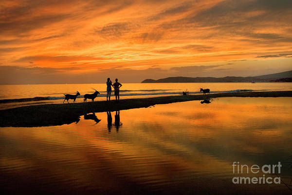 Silhouette And Amazing Sunset In Thassos Art Print