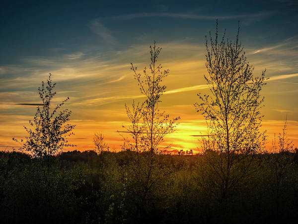 Photograph - Silhouette By Sunset by Nick Bywater