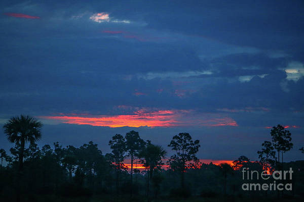 Photograph - Silhouette Sunrise by Tom Claud