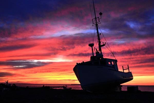 Photograph - Silhouette Sunset by David Matthews