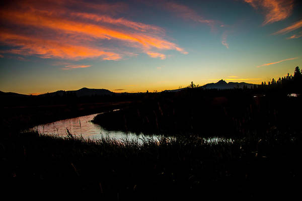 Photograph - Silhouette Sunset by Doug Scrima
