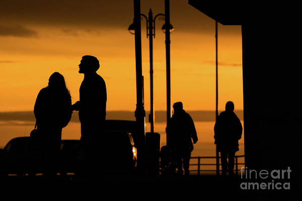 Photograph - Silhouettes At Sunset by Keith Morris