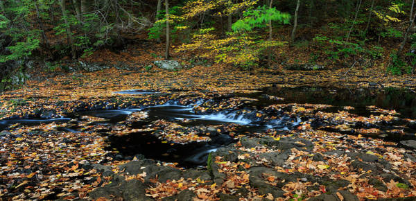 Silky New England Stream In Autum Art Print