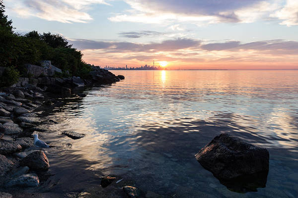 Photograph - Silky Smooth And Transparent - Toronto Sunrise On The Lake by Georgia Mizuleva