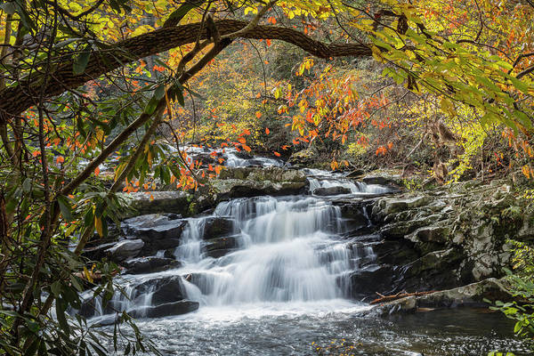 Photograph - Silky Water Embraced With Fall Color by Debra and Dave Vanderlaan
