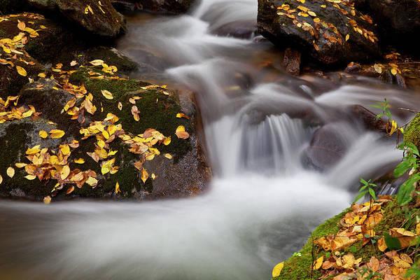 Photograph - Silky Water by Jill Lang