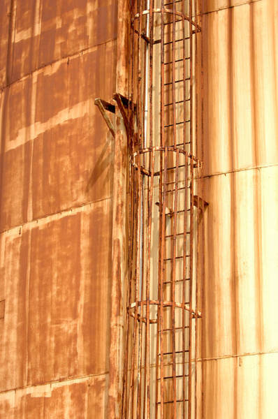 Photograph - Silo Ladder by Jill Reger
