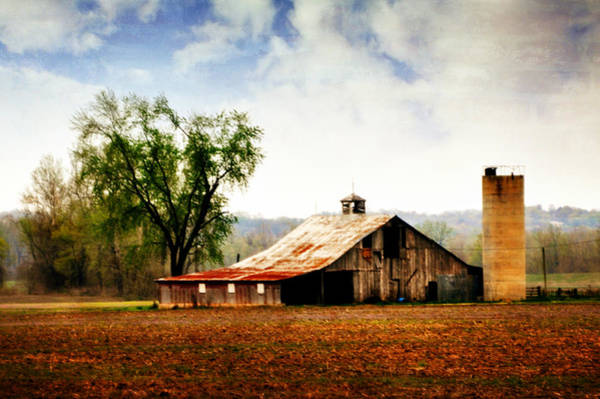 Photograph - Silo Tree Barn by Marty Koch