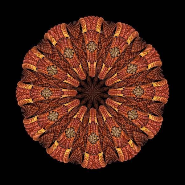 Digital Art - Silvanic Medallion by Doug Morgan
