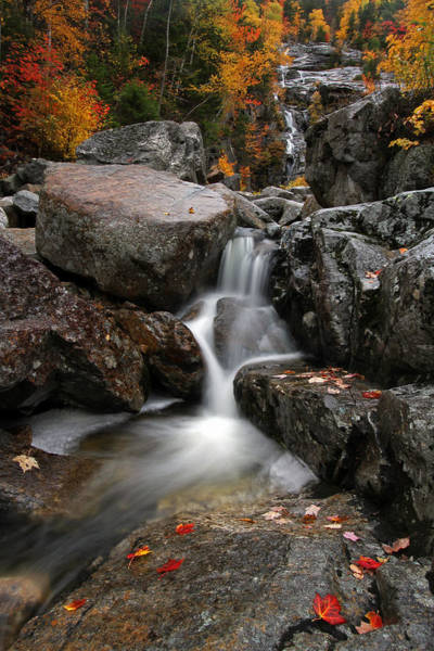 Photograph - Silver Cascade At Crawford Notch State Park by Juergen Roth