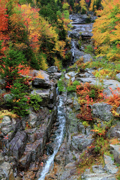 Photograph - Silver Cascade In Autumn by Dan Sproul