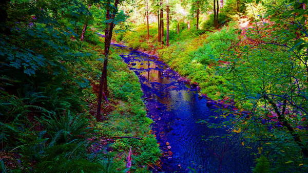 Photograph - Silver Creek Falls #21 Enhanced by Ben Upham III