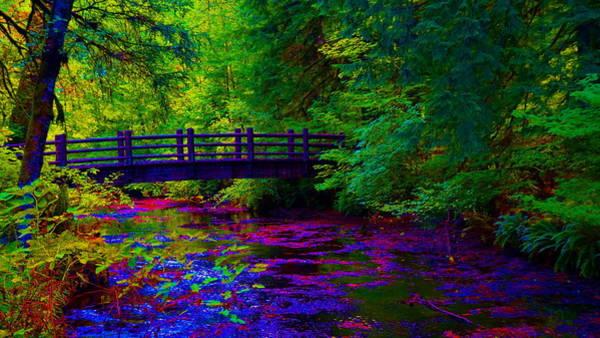 Photograph - Silver Creek Falls #38 Enhanced by Ben Upham III