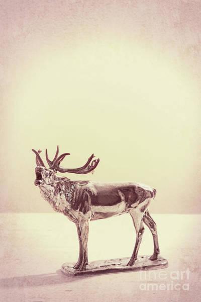 Wall Art - Photograph - Silver Elk Antique Ornament by Amanda Elwell