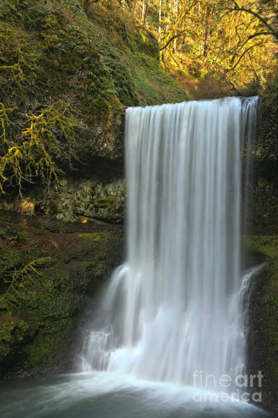 Photograph - Silver Falls Lower South Falls by Adam Jewell