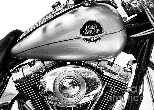 Harley Davidson Black And White Wall Art - Photograph - Silver Harley by Tim Gainey