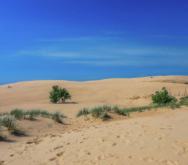 Photograph - Silver Lake Michigan Dune Rides by Dan Sproul