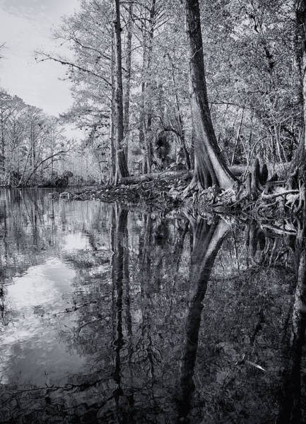 Photograph - Silver River by Ghostwinds Photography