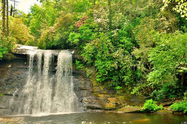 Photograph - Silver Run Falls Cashiers Nc by Lisa Wooten