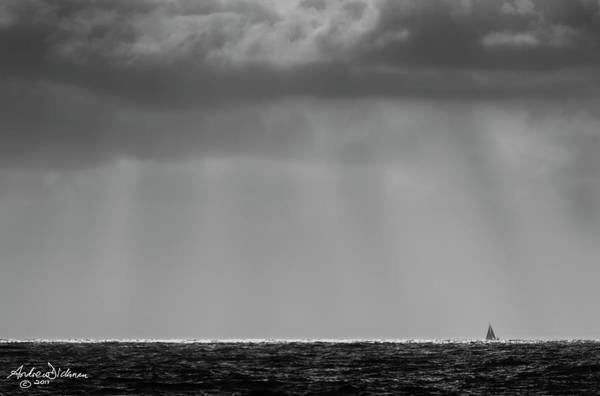Scallion Photograph - Silver Sailor by Andrew Dickman