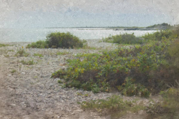 Silver Shoreline Westport Ma Art Print