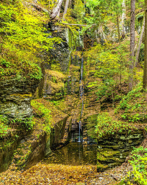 Photograph - Silver Thread Falls by Nick Zelinsky