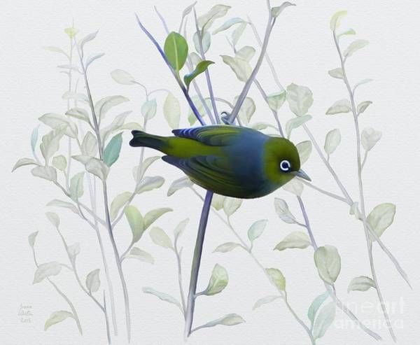 Painting - Silvereye by Ivana Westin