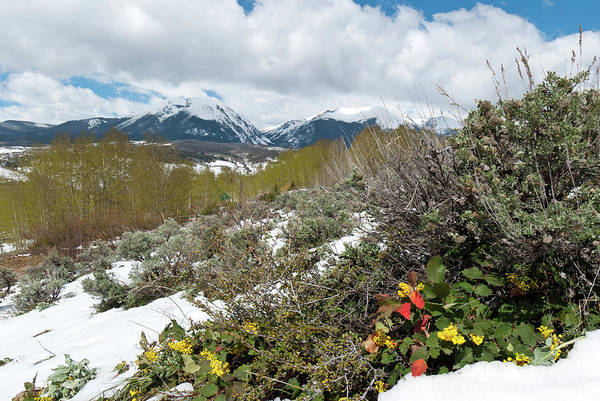 Photograph - Silverthorne Early Spring Landscape by Cascade Colors