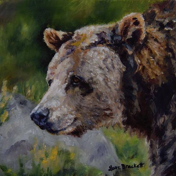 Painting - Silvertip by Lori Brackett