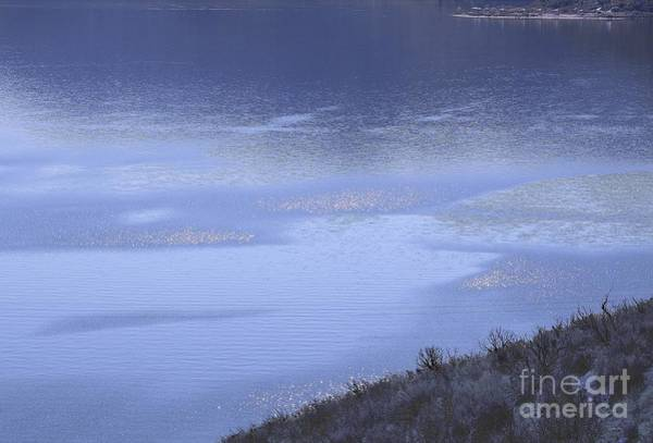 Silverwood Lake In Blue Overcast Art Print