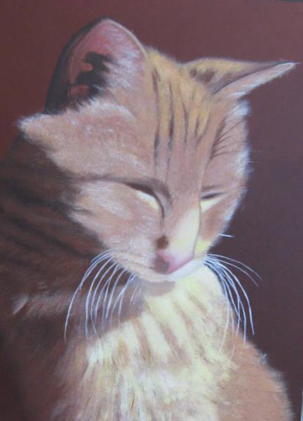 Painting - Simba, Best Cat. by Lorraine Bradford