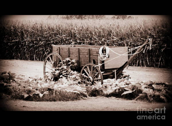 Wall Art - Photograph - Simpler Times by Eric Irion