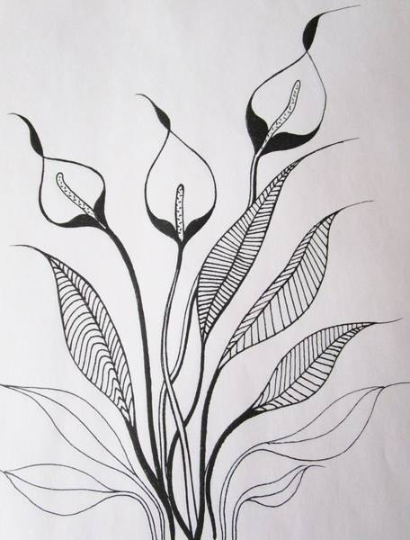 Drawing - Simplicity by Rosita Larsson