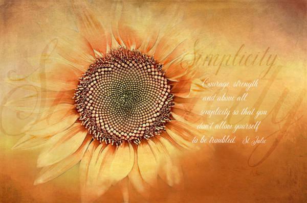 Sunshine Digital Art - Simplicity by Terry Davis