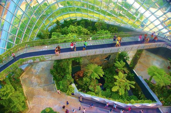 Photograph - Singapore Cloud Forrest 4 by Phyllis Spoor