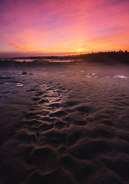 Wall Art - Photograph - Singing Sands Sunset by Cale Best