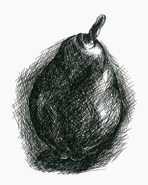 Drawing - Single Pear by MM Anderson