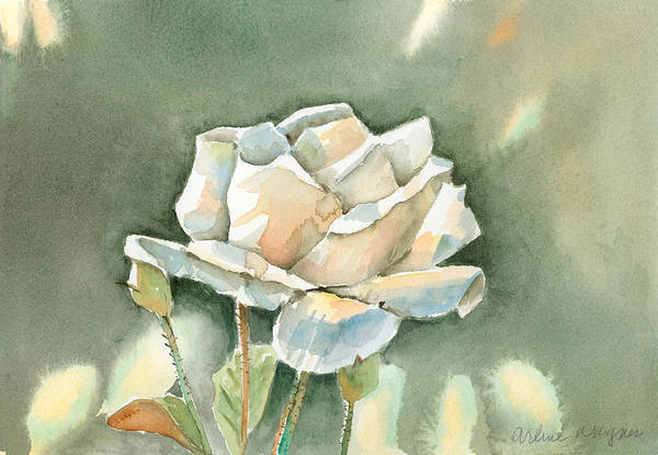 Single Rose Painting - Single  White Rose by Arline Wagner