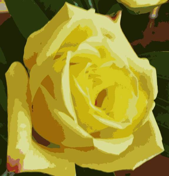 Photograph - Friendship Rose Abstract by Karen J Shine