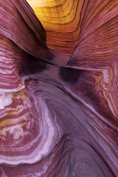 Vermilion Cliffs Wall Art - Photograph - Singular Landmark by Chad Dutson
