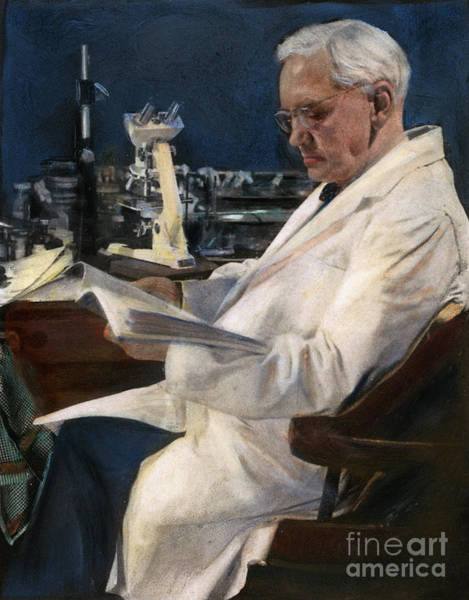 Drawing - Sir Alexander Fleming by Granger