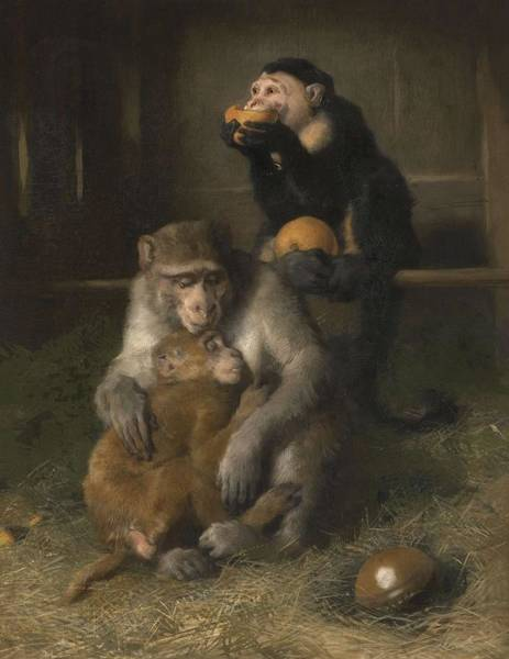 Baby Gorilla Painting - Sir Edwin Henry Landseer, R.a. 1802-1873 Doctor's Visit To Poor Relations At The Zoological Gardens by Artistic Panda