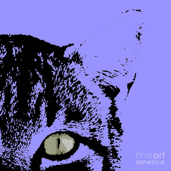 Drawers Painting - Sir Rodgerson On Purple Background by Drawspots Illustrations