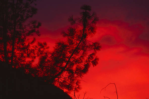 San Rafael Wilderness Photograph - Sisquoc Sunset by Soli Deo Gloria Wilderness And Wildlife Photography