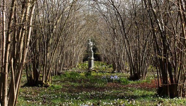Castle Garden Photograph - Sissinghurst Castle by Martin Newman