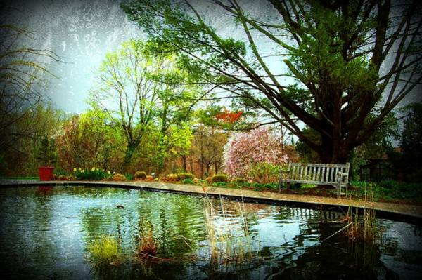 Photograph - Sit And Ponder - Deep Cut Gardens by Angie Tirado